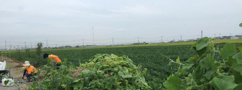 農業法人仙台イーストカントリー