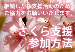 桜支援参加方法