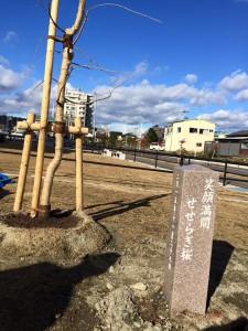 11.28wakabayashi_fukkouzyutaku_11