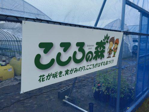 9-21ishinomaki_kokoronomori01